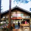 Bangka botanical garden 4