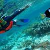 pulau molana 1