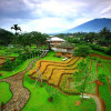 kampung bambu 2