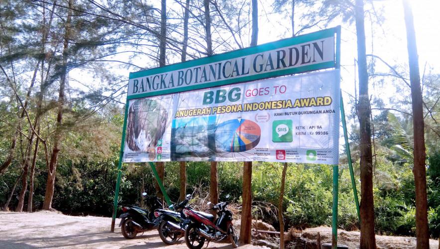 Bangka botanical garden 2
