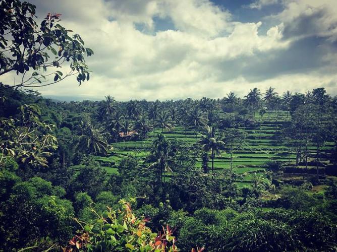 desa tetebatu lombok 1