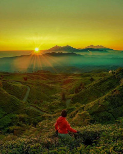 malasari view